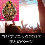 コヤブソニック 2017 日割りが発表!出演者第2弾まで発表済み!