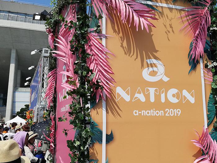 a-nation大阪会場の様子11